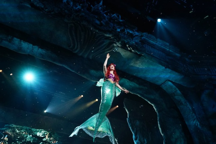 The Little Mermaid Live! 12 место в списке